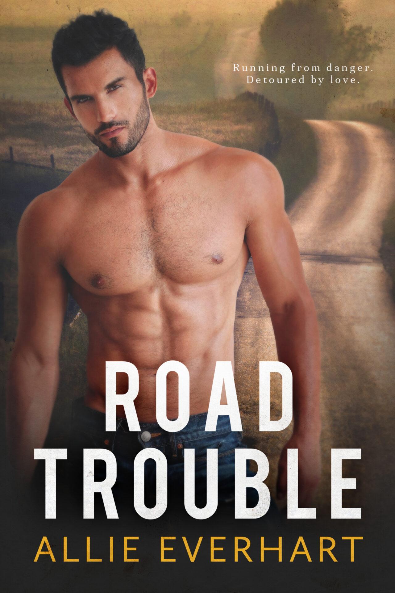 Road Trouble is a romantic suspense novel by Allie Everhart.